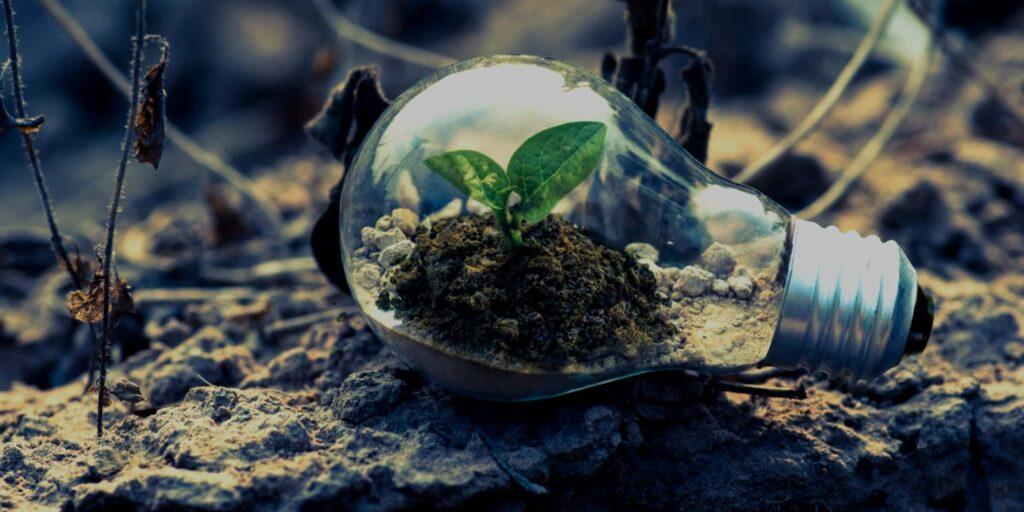 5 fordele ved at vækste din forretning globalt