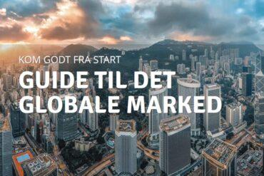 Guide til det globale marked